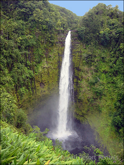 Big Akaka Falls drops into a pool below, surrounded by jungle vegetation in the moist air
