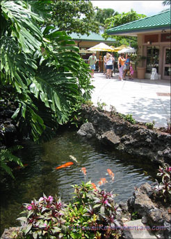 Waikoloa Kings' Shops koi pond and shops