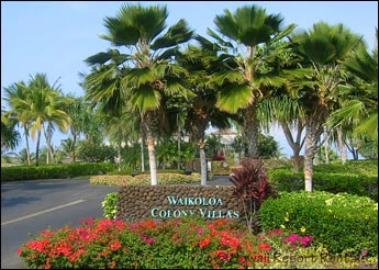Waikoloa Colony Villas entry gate with palms and colorful landscaping