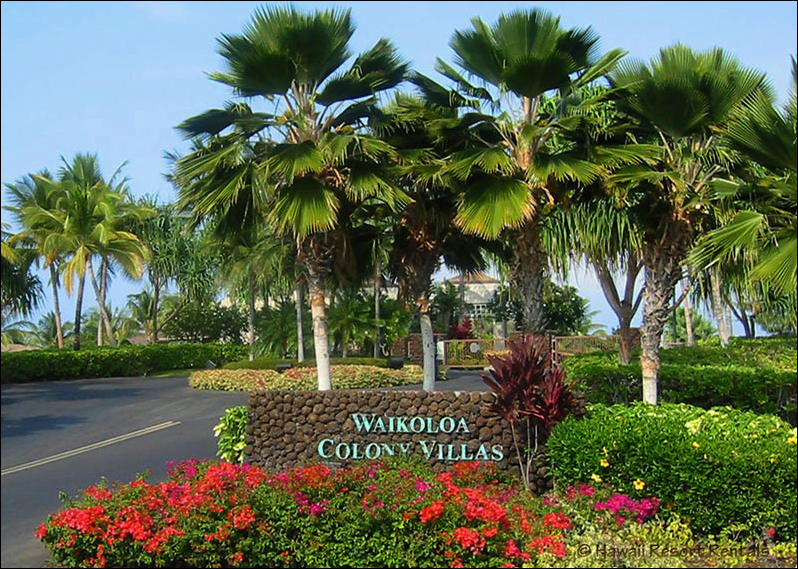Waikoloa Colony Villas gated entry to our complex surrounded by lush landscaping and Palms